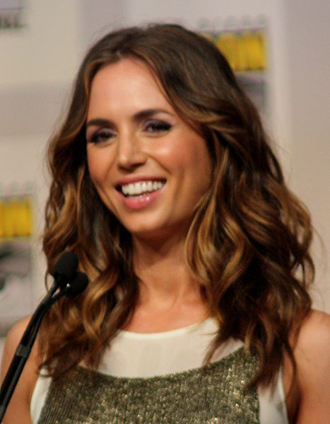 Eliza Dushku Net Worth