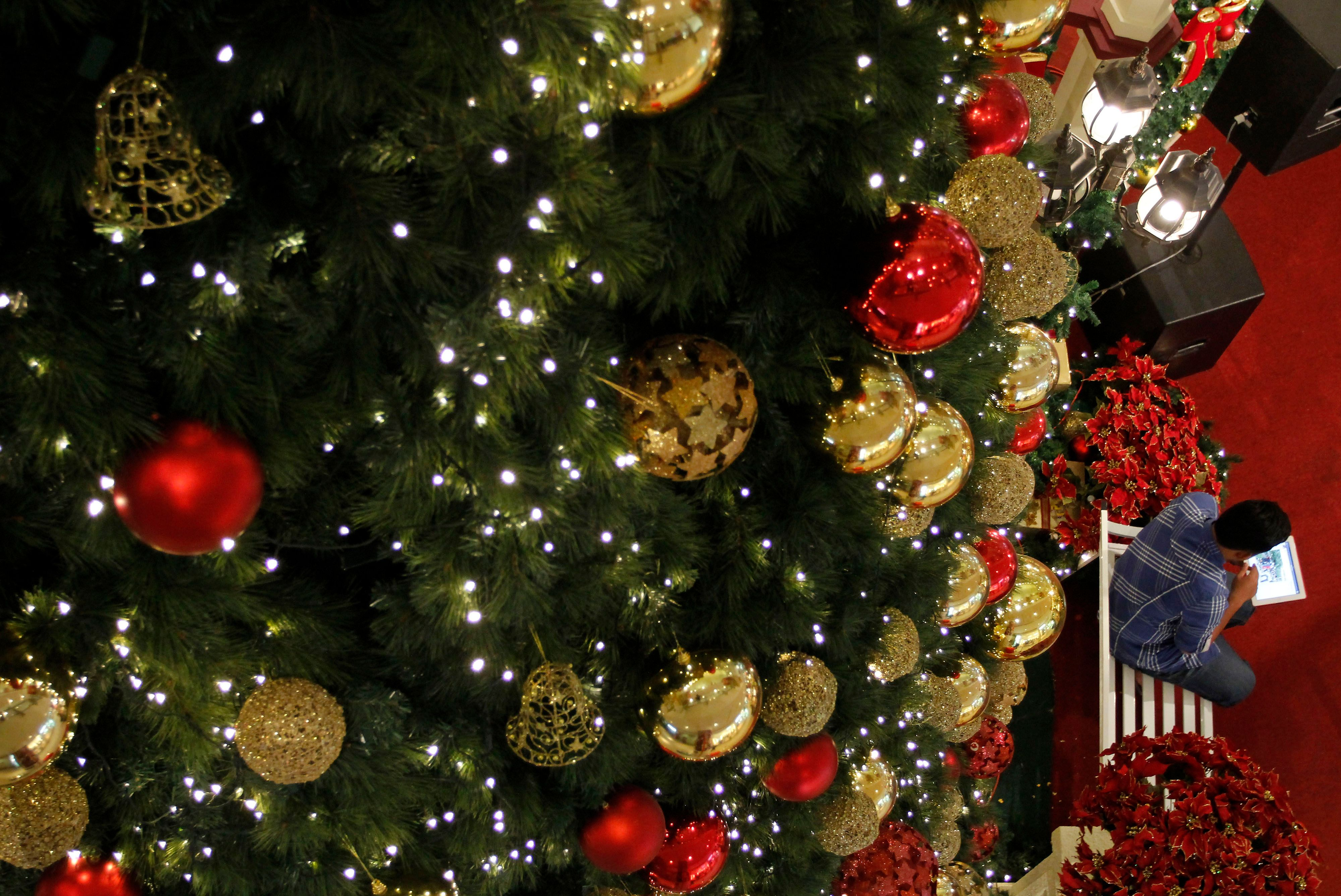 Deck The Halls And The Most Expensive Christmas Trees