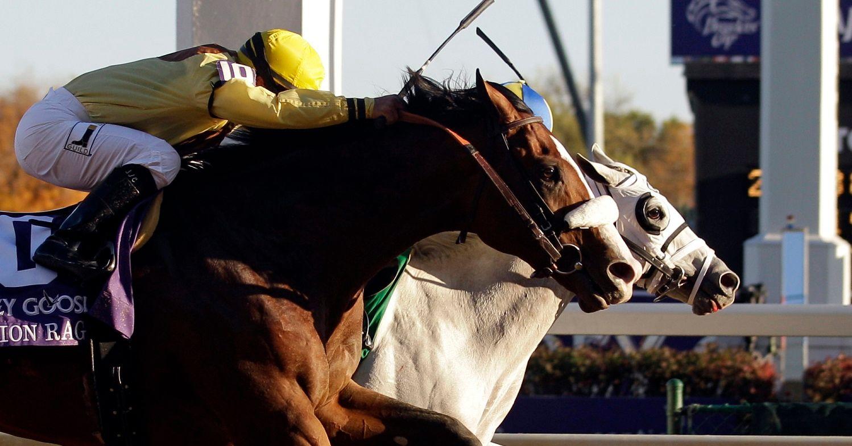 Top 10 Highest-Earning Horse Racing Jockeys for 2013