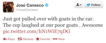 Canseco Tweet