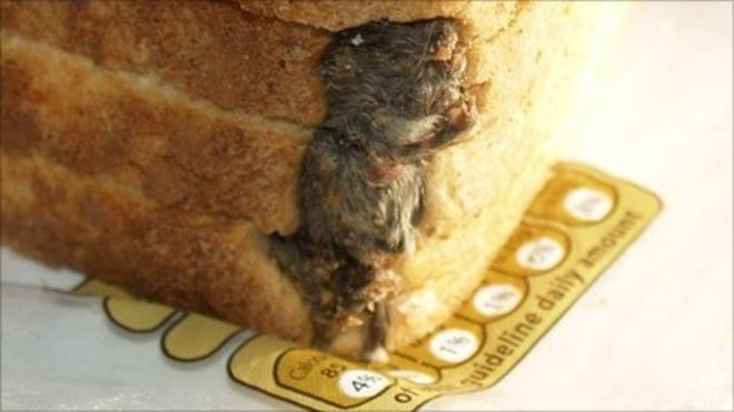 10. Dead Mouse in Bread Loaf