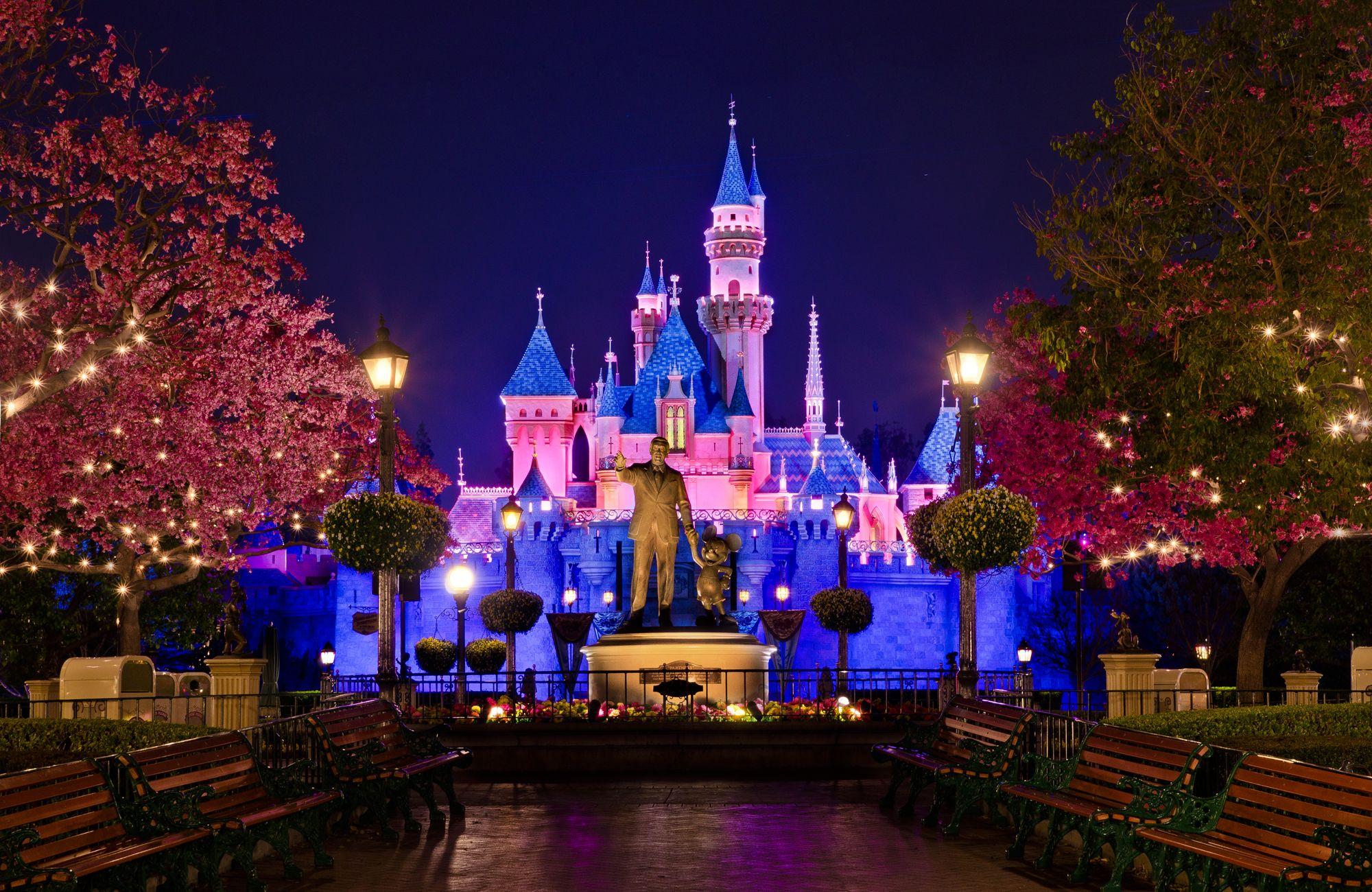 9. Disney Fanatic