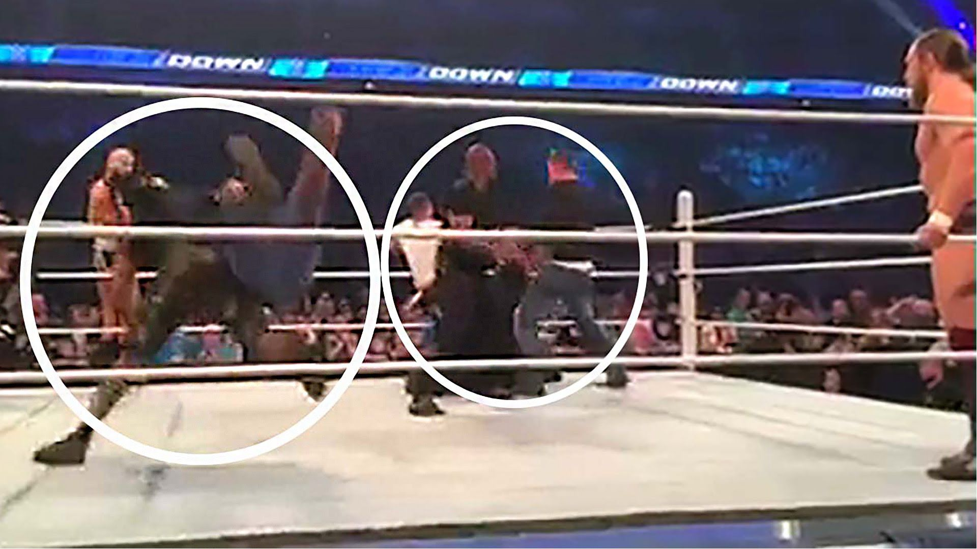Top 10 Altercations Between Wrestlers and Fans Caught on Video