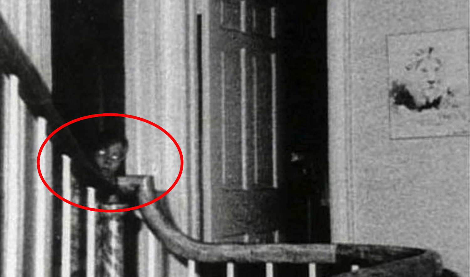 15 Of The Most Disturbing Pictures That Will Haunt You