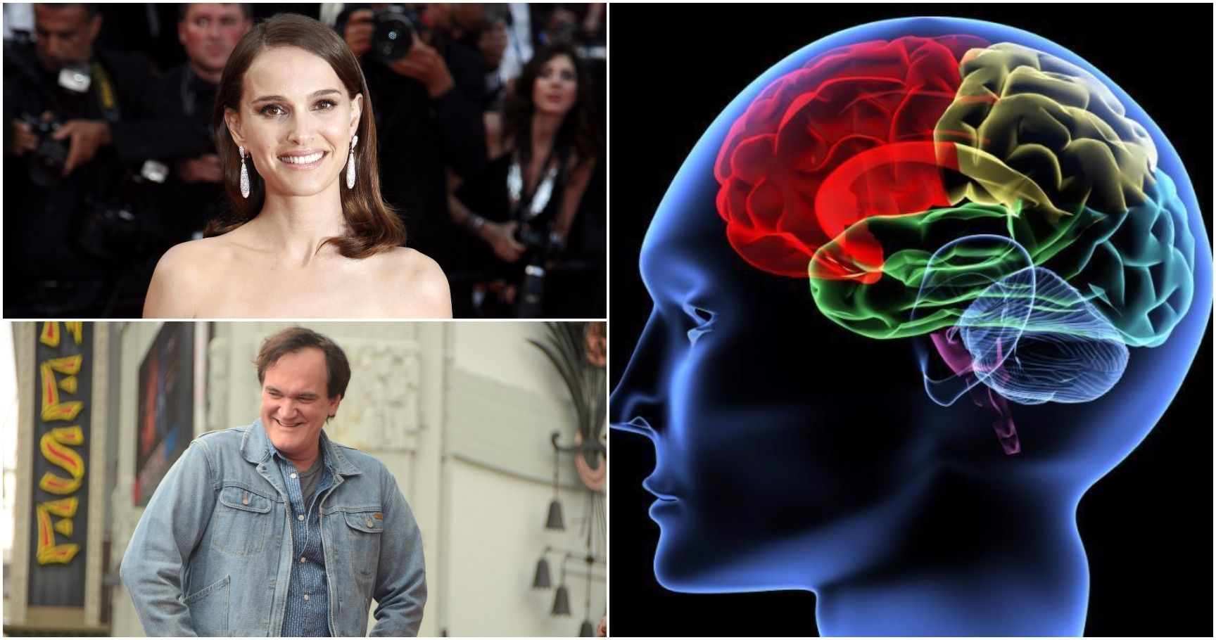 15 Celebrities You Didn't Know Have Shockingly High IQs