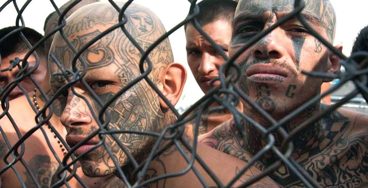 15 Things You Didn't Know About MS-13, The Most Dangerous ...