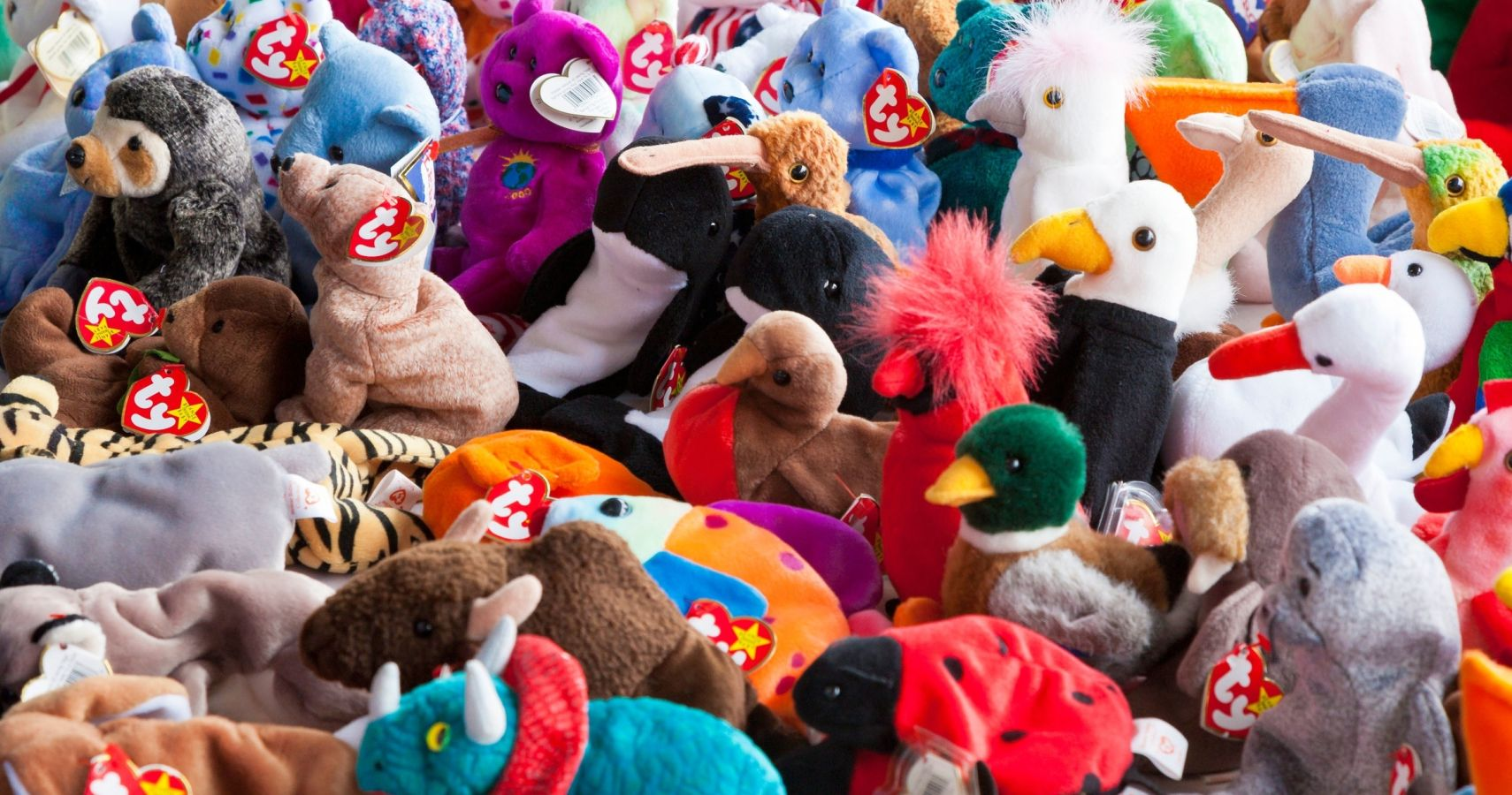 9dbc9ca8317 10 Incredibly Expensive Beanie Babies... That Might Be Lying In Your Attic