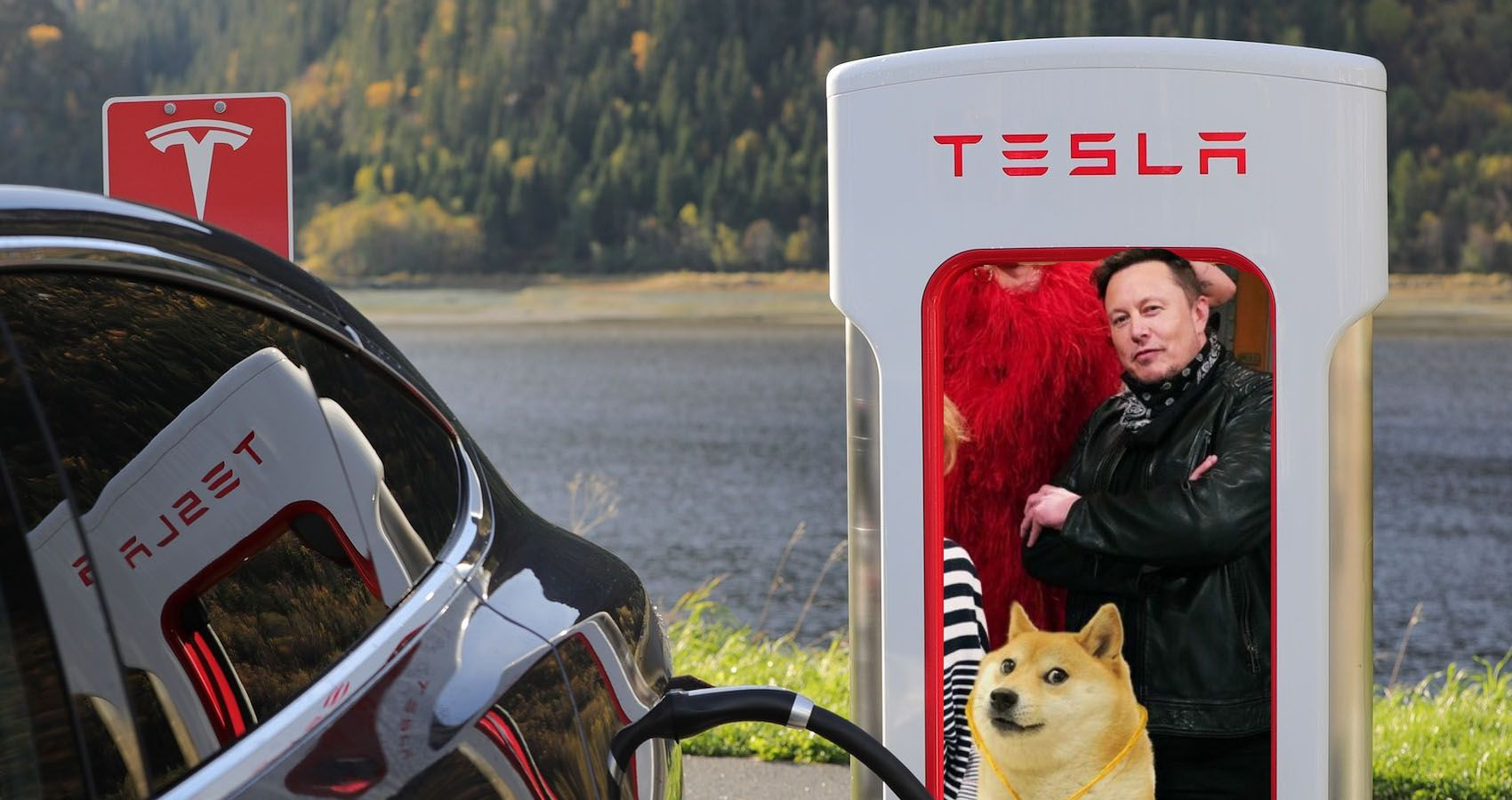 Elon Musk Asks Twitter If Tesla Should Accept Dogecoin